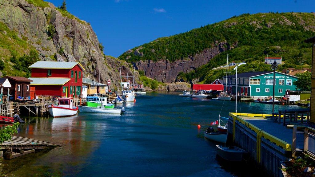 Quidi Vidi which includes a marina