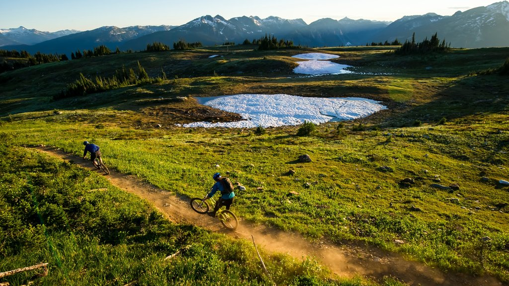 Revelstoke which includes landscape views, tranquil scenes and mountain biking