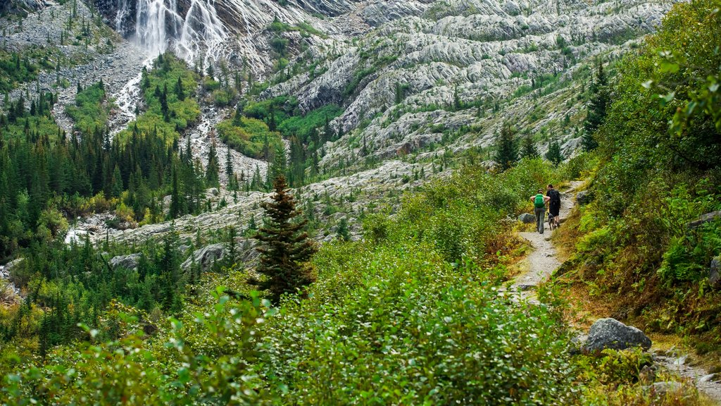 Revelstoke which includes hiking or walking and tranquil scenes