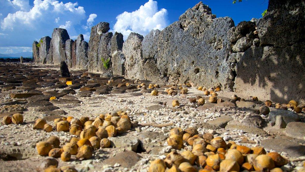 Marae Taputapuatea featuring a ruin