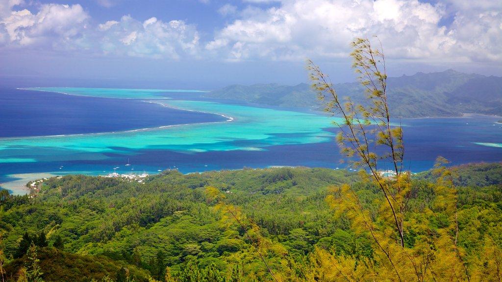 Raiatea que incluye vistas de paisajes y vistas generales de la costa