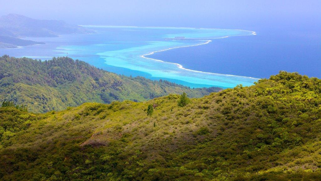 Raiatea ofreciendo montañas, vistas de paisajes y vistas generales de la costa