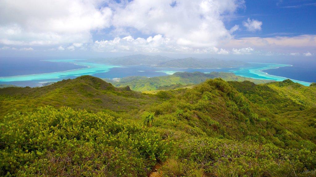 Raiatea mostrando vistas generales de la costa y vistas de paisajes