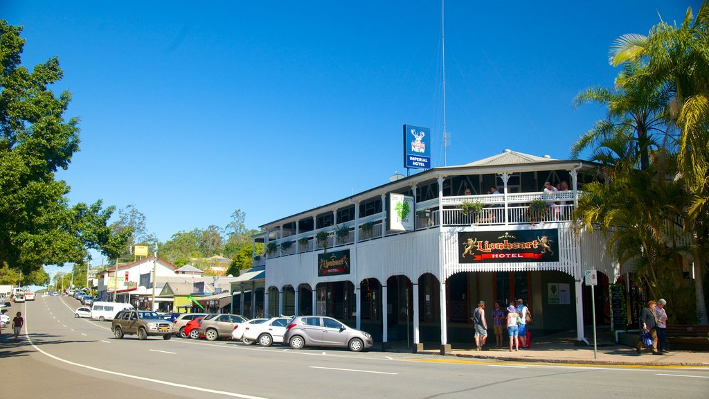 Eumundi showing a small town or village