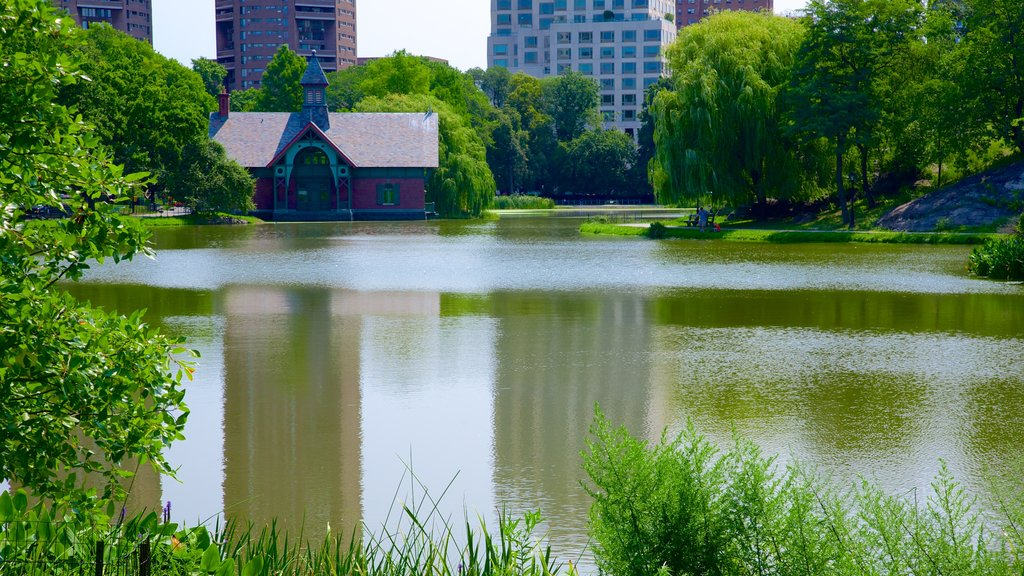 Central Park showing a pond and a garden