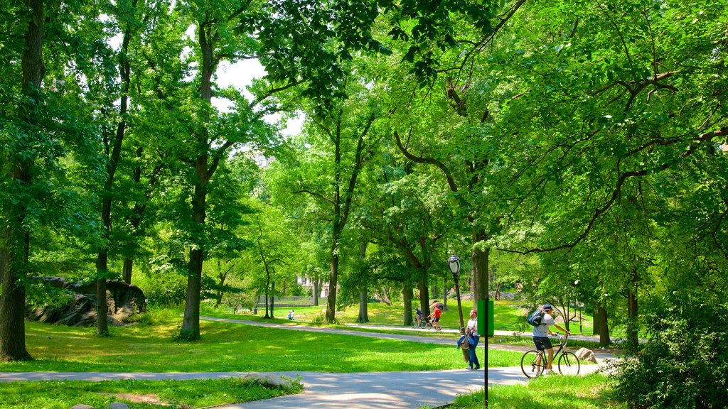 Central Park featuring cycling and a garden as well as a small group of people