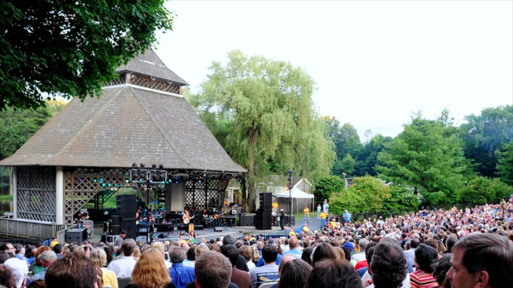 Danbury showing a festival, music and performance art