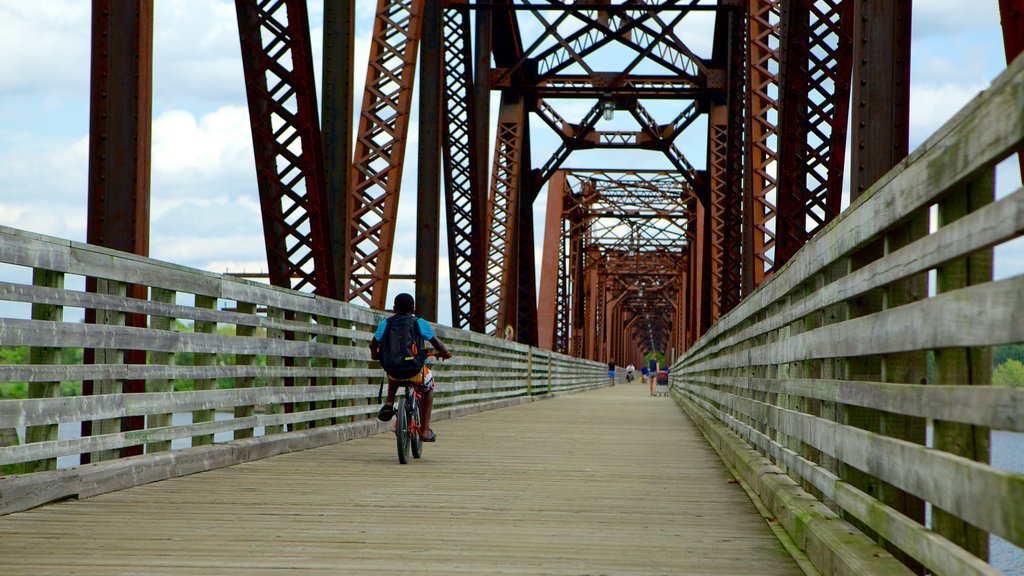 Fredericton featuring cycling and a bridge as well as an individual male