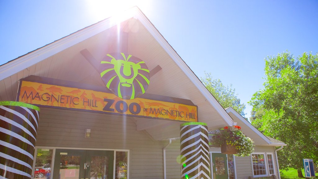 Magnetic Hill Zoo showing signage and zoo animals