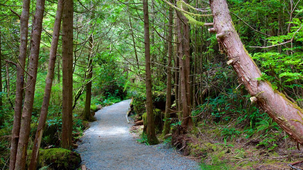 Pacific Rim National Park Reserve which includes forest scenes and a garden