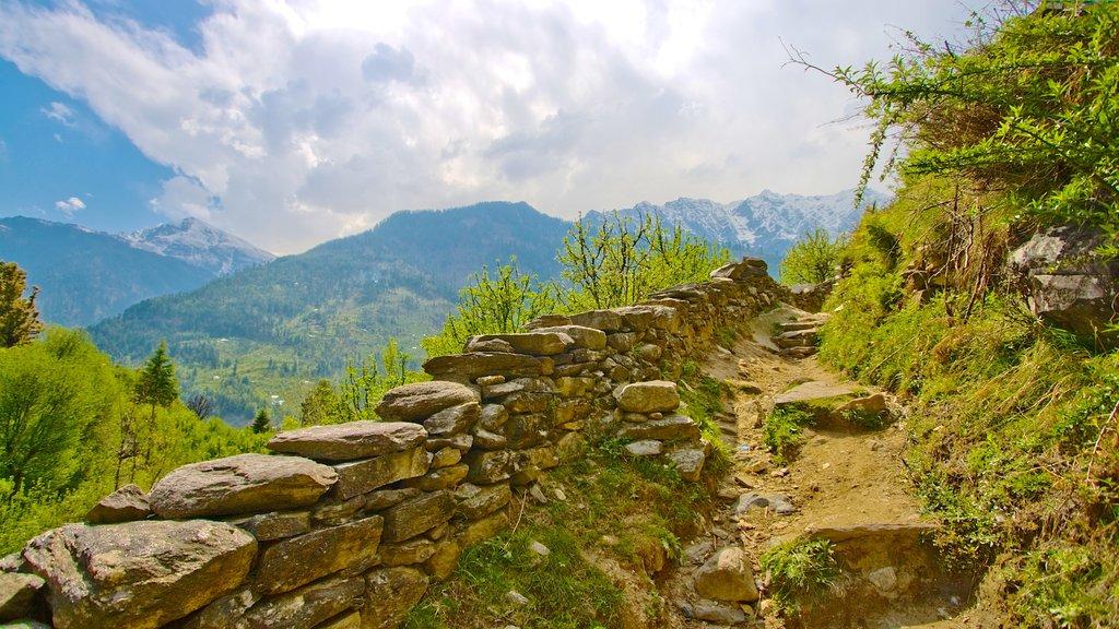 Manali mostrando escenas tranquilas y vistas de paisajes