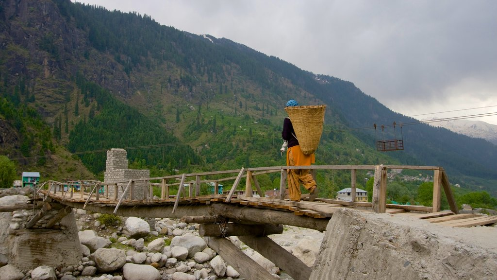 Manali which includes a suspension bridge or treetop walkway and a bridge as well as an individual male