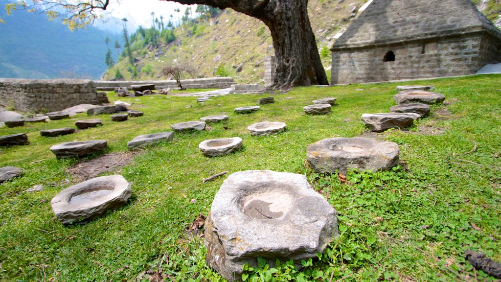 Manali which includes tranquil scenes
