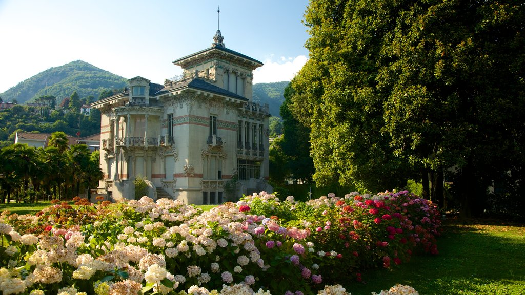 Cernobbio featuring a park, flowers and heritage architecture