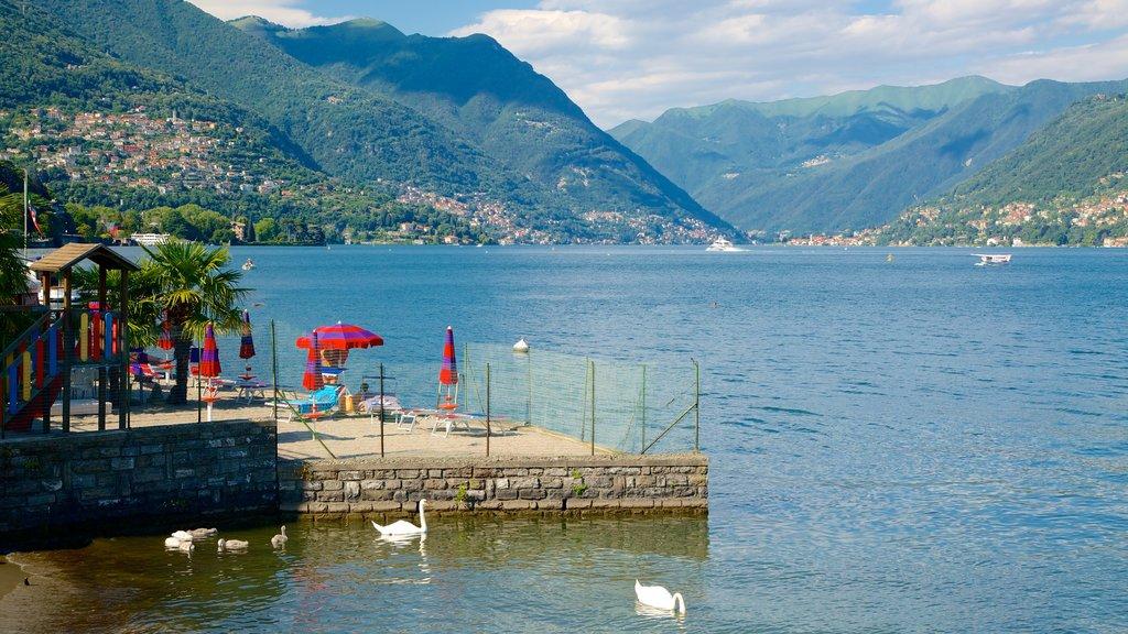 Villa Olmo showing general coastal views, a coastal town and a bay or harbor