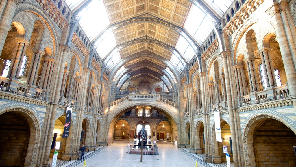 London Natural History Museum showing heritage architecture, heritage elements and interior views