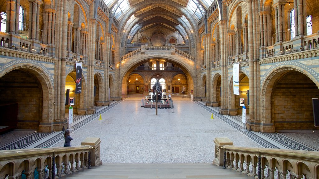 London Natural History Museum showing heritage elements, heritage architecture and interior views