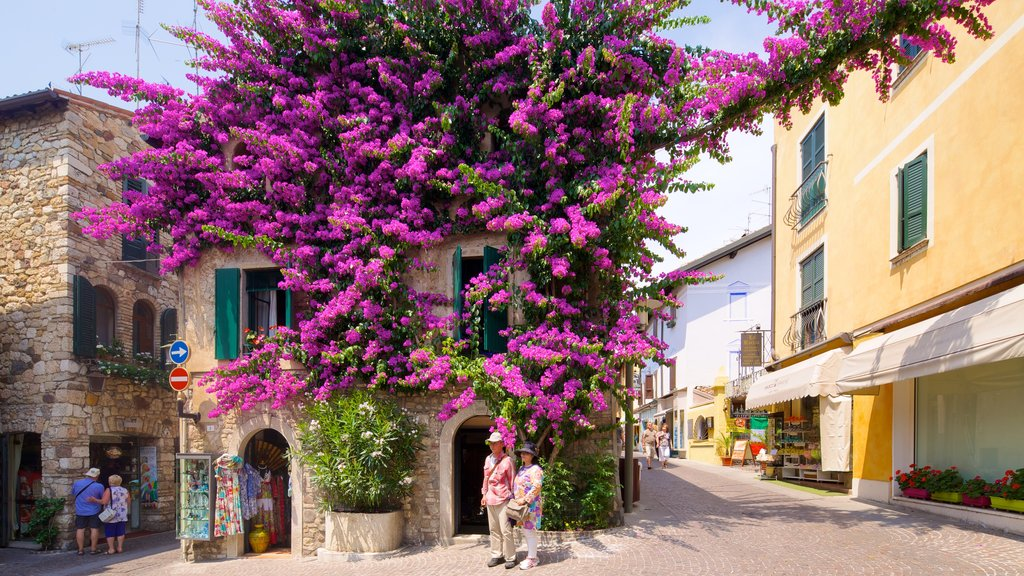 Sirmione featuring flowers and a city