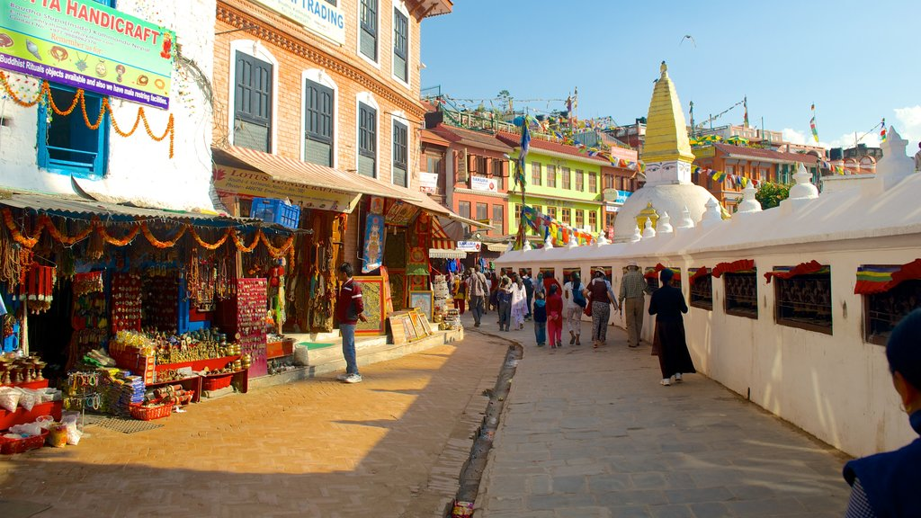 Boudhanath showing a city