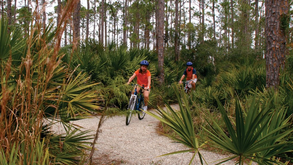 Port Charlotte - Charlotte Harbor which includes forests and cycling