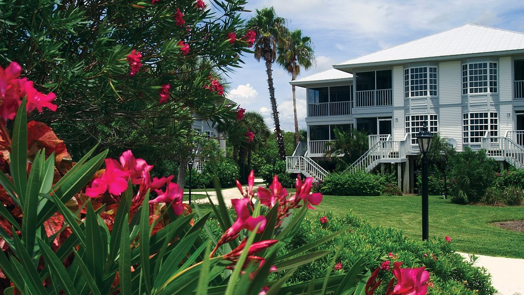 Port Charlotte - Charlotte Harbor showing a house and flowers