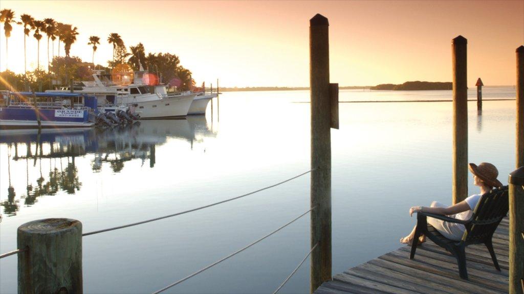 Port Charlotte - Charlotte Harbor que incluye una puesta de sol y vistas generales de la costa