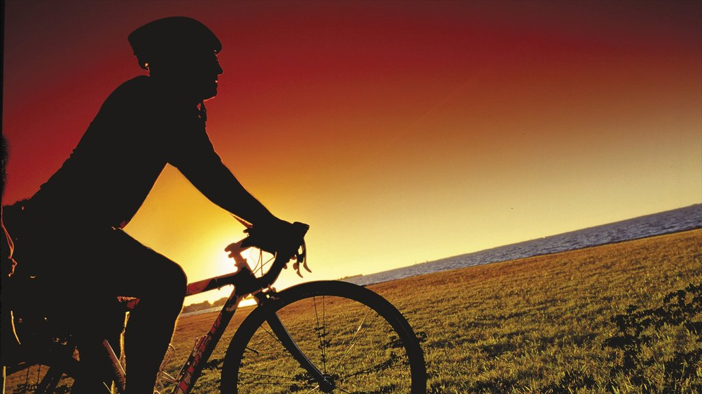 Playa de Englewood mostrando ciclismo y una puesta de sol