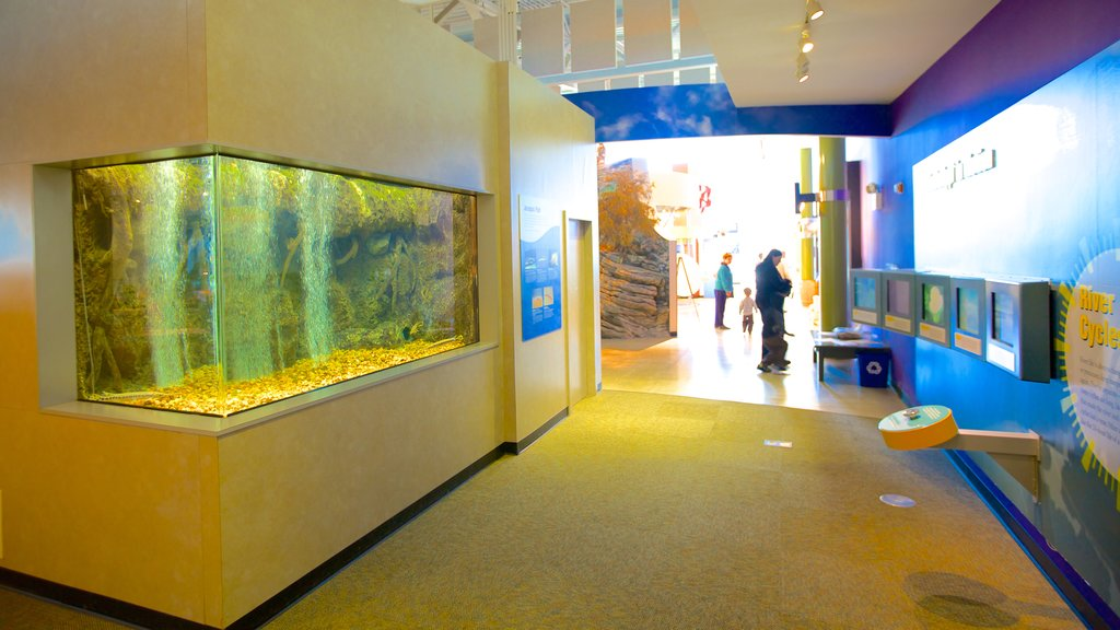National Great Rivers Museum featuring interior views