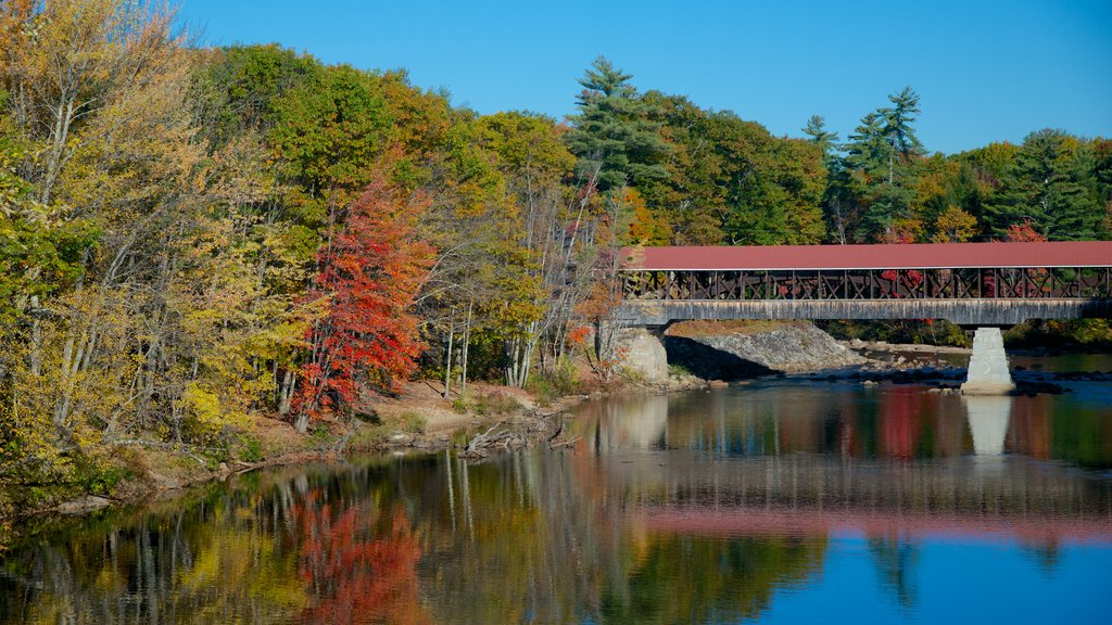 Conway mostrando los colores del otoño, un puente y un río o arroyo