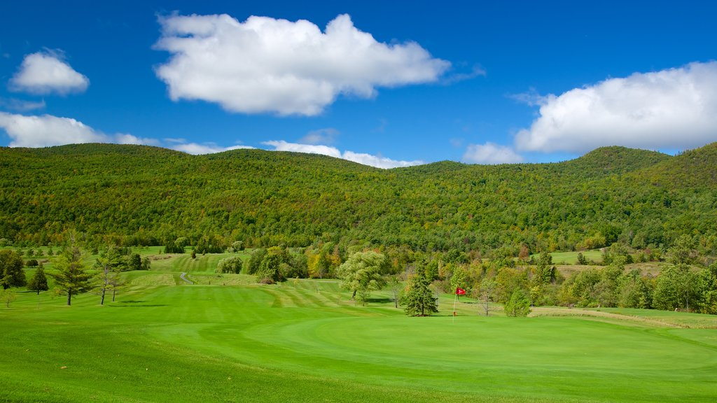 Ticonderoga showing golf and tranquil scenes