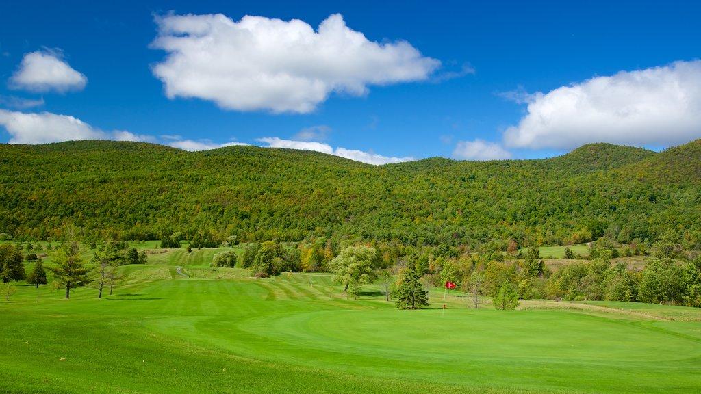 Ticonderoga que incluye escenas tranquilas y golf