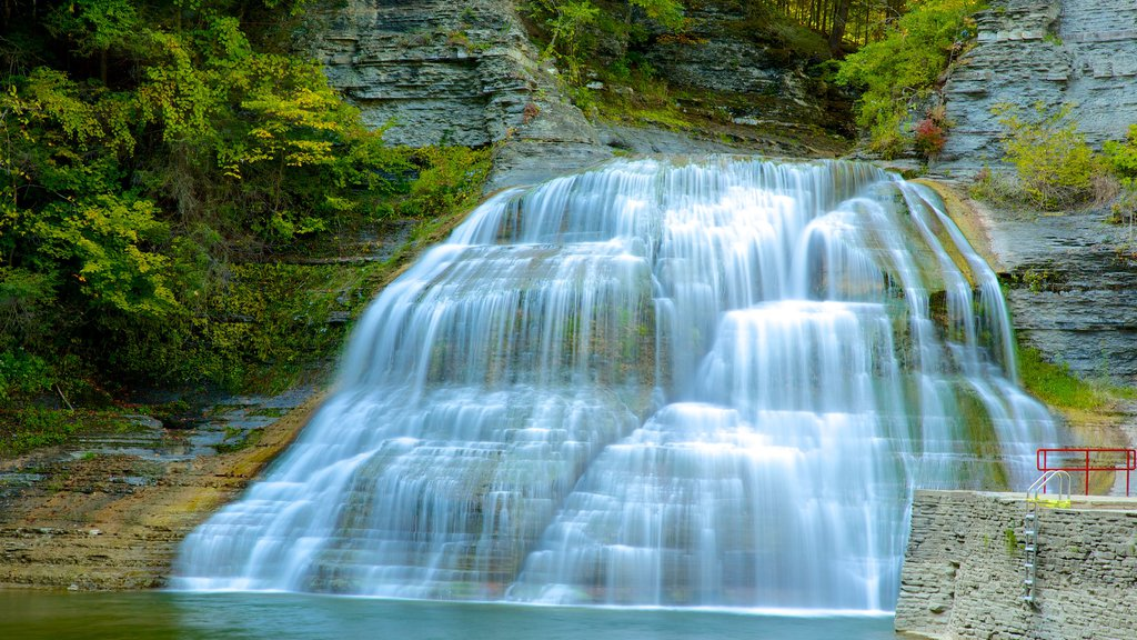 Robert H. Treman State Park which includes a cascade