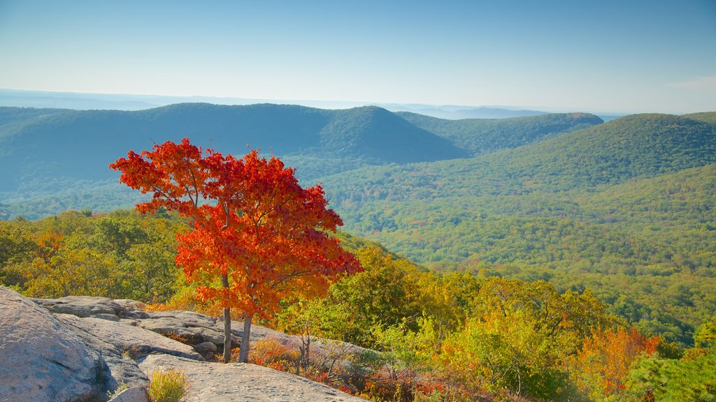 Bear Mountain State Park showing autumn leaves and tranquil scenes