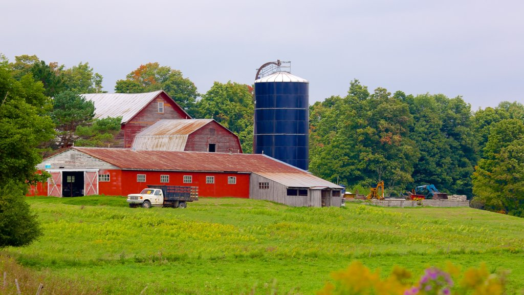 Cooperstown showing farmland