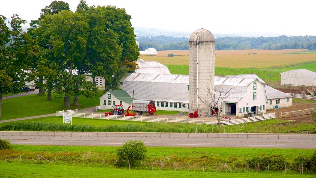 Hamilton que incluye tierras de cultivo