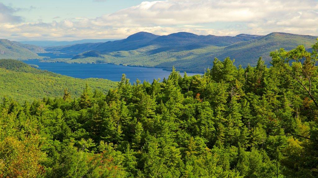 Lake George que incluye un lago o abrevadero y escenas tranquilas