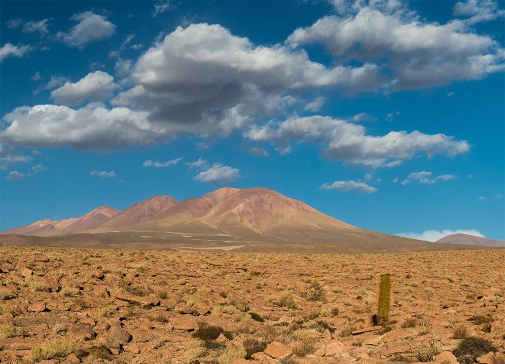 Il deserto più arido della terra vede la comparsa di qualche nube tra gennaio e febbraio, e anche un po' di pioggia con qualche fortuna - By Alessandro Caproni - (https://www.flickr.com/photos/weyes/25948718422/in/album-72157637583810136/), via Flikr