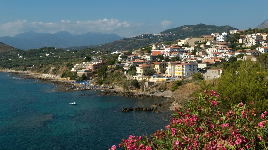 Palinuro showing a coastal town and rugged coastline