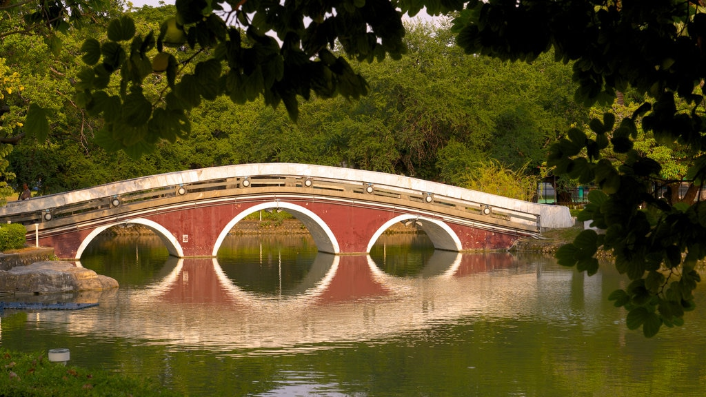 Taichung Park which includes a lake or waterhole, a bridge and a park