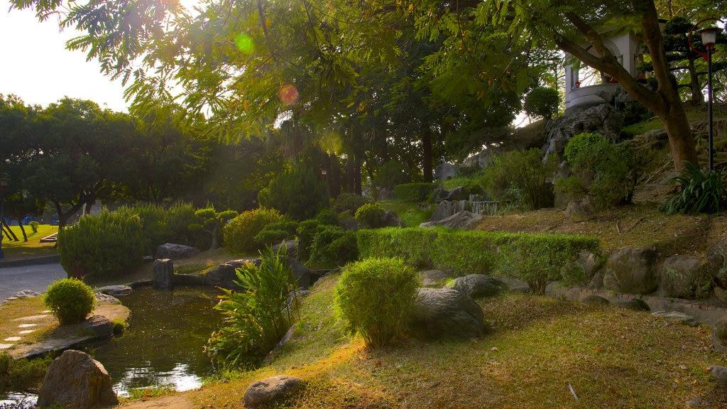 Taichung Park featuring a park