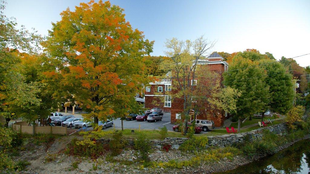 Wilmington mostrando hojas de otoño