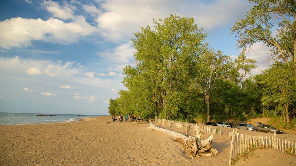 Erie featuring a beach