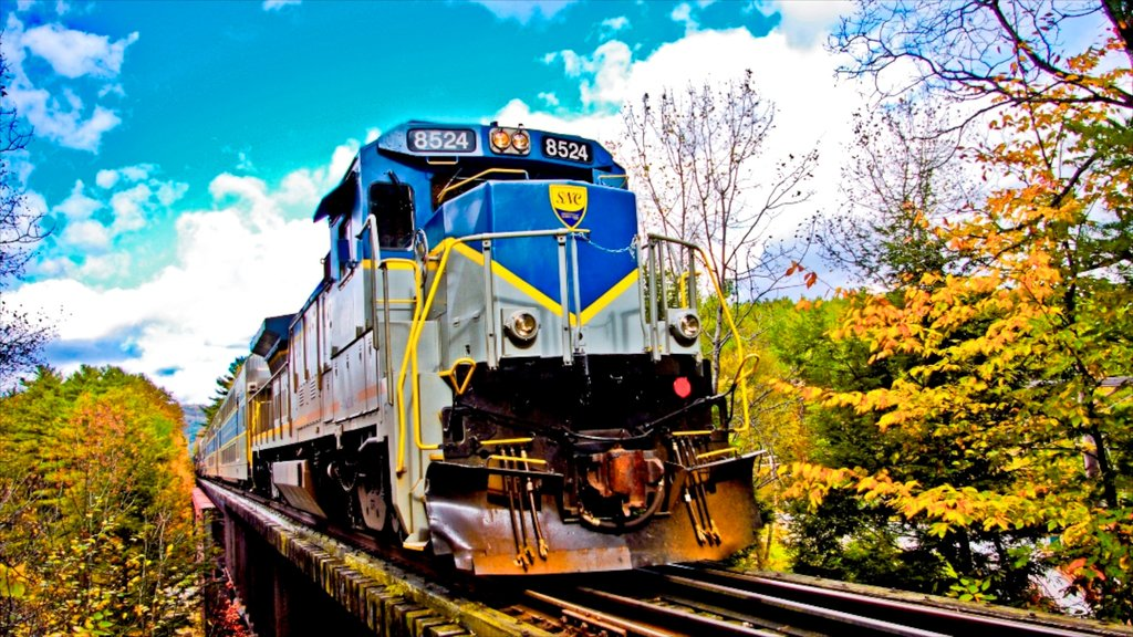 Saratoga Springs showing railway items