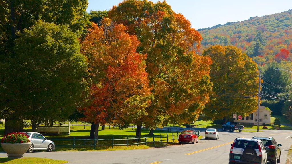 Weston ofreciendo los colores del otoño
