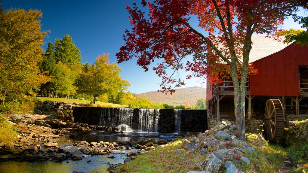 Weston que incluye hojas de otoño y un río o arroyo