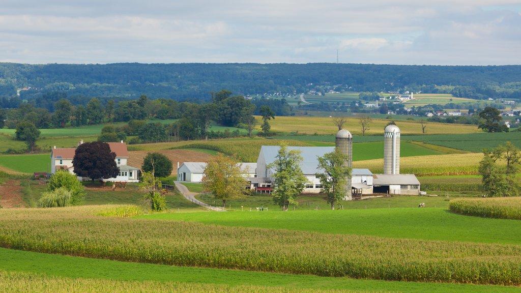 Strasburg ofreciendo vistas de paisajes y tierras de cultivo