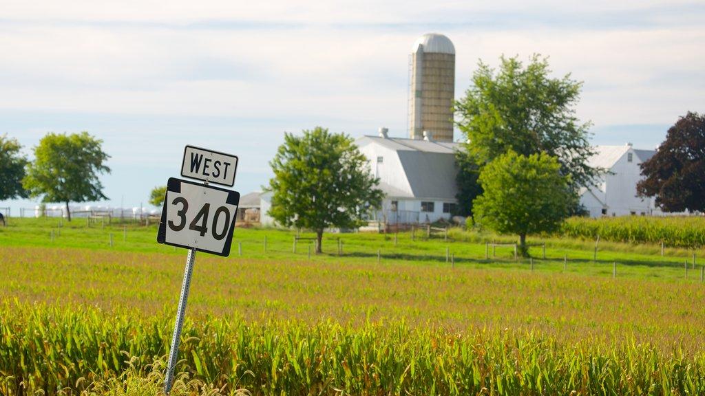 Intercourse showing farmland
