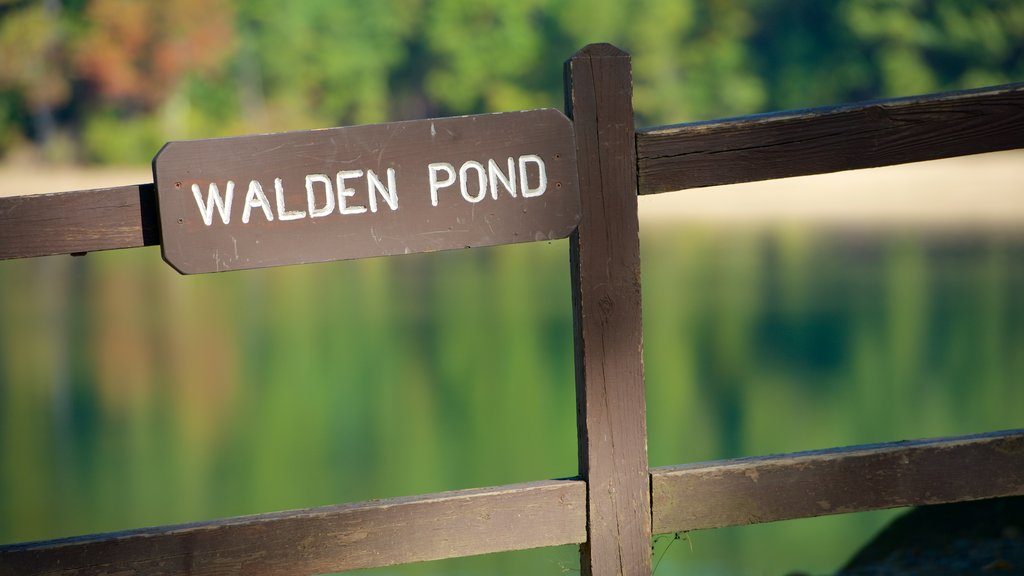 Walden Pond which includes signage