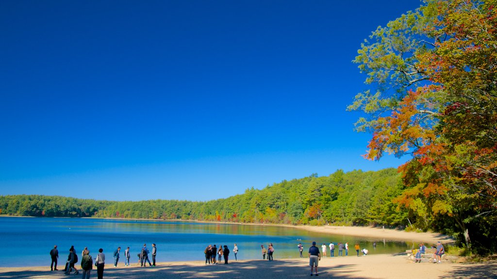 Walden Pond showing a lake or waterhole, landscape views and skyline
