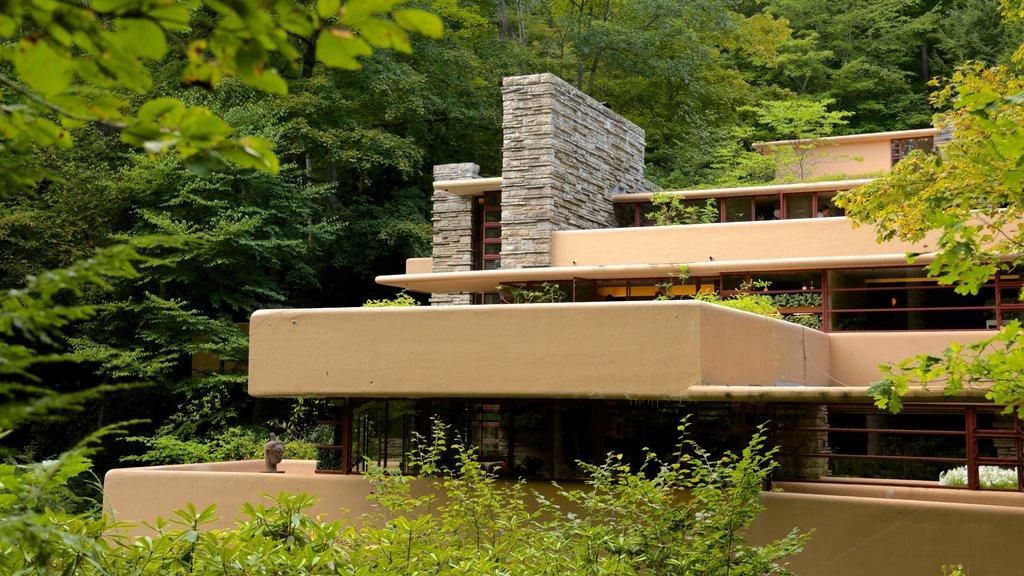 Fallingwater ofreciendo arquitectura moderna y selva